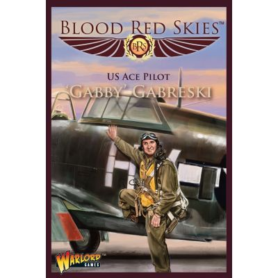 P-47 Thunderbolt Ace: 'Gabby' Gabreski